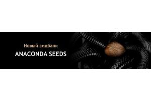 Новый Сидбанк Anaconda Seeds