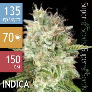 Семена Конопли Bulk Seed Bank Auto Cheese Feminised