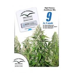 High Potency Autoflower Mix