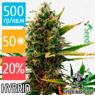 Семена Конопли Green Silk Road Seeds Super Skunk Feminised