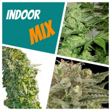 Индор mix