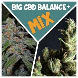 BIG КБД Баланс + mix