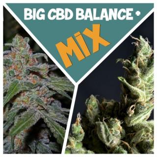 Семена Конопли Superior Seeds BIG КБД Баланс + mix