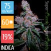 Семена Конопли Super Seeds Blueberry Feminised XXXL