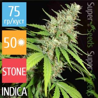 Семена Конопли Super Seeds Top44 Feminised