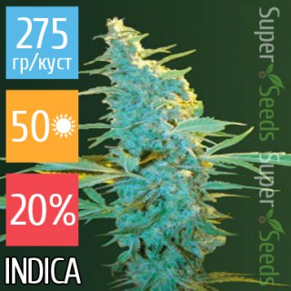 Семена Конопли Victory Seeds Ultra Power Plant Feminised