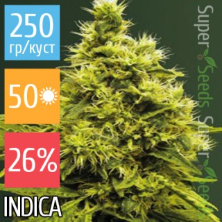 Семена Конопли Victory Seeds White Widow Feminised