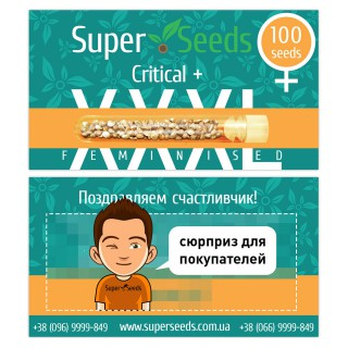 Семена Конопли Super Seeds Critical+ Feminised XXXL