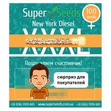 New York Diesel Feminised XXXL