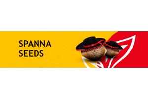 Spanna Seeds много не бывает