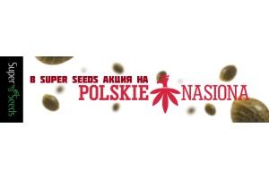 Акция на семена Polskie Nasiona!