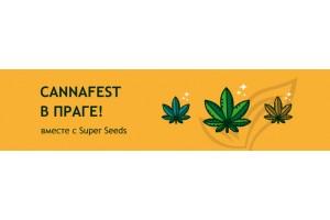 Cannafest в Праге