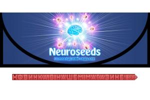 Новинка в магазине - Neuro Seeds!