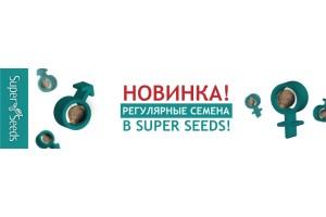 Новинка Регулярные Семена!